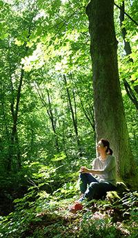 自然の中にでかけることのススメ~頑張らない森歩き~